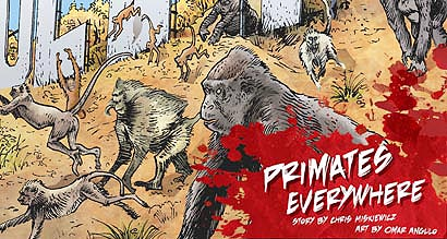 Primates Everywhere!